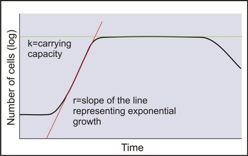 K Strategist Examples Bacterial Growth Curve